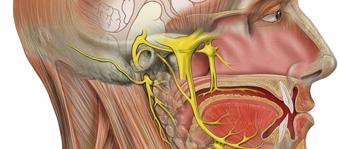علاج ألم العصب مثلث التوائم Trigeminal neuralgia